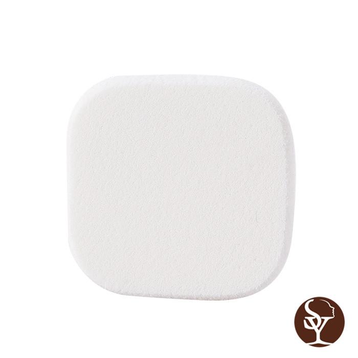 E103 makeup sponge